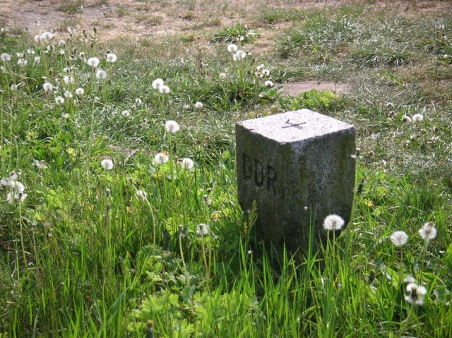 20110511-104550.jpg