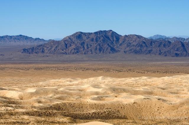 Mojave Desert - Kelso Dunes Area